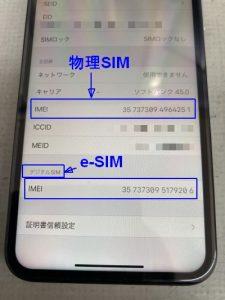 iPhone dualSIM