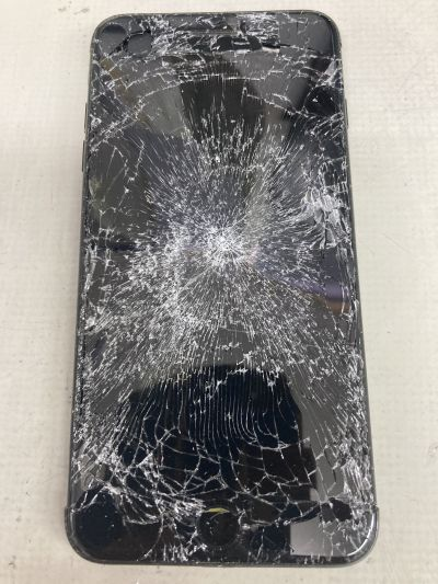 蜘蛛の巣iPhone7Plus ~臼杵市
